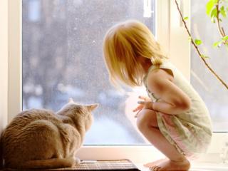 окна ПВХ не имеют специфического запаха и нетоксичны